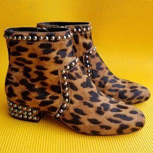 Sam Edelman Lorin Leopard/studs ankle booties